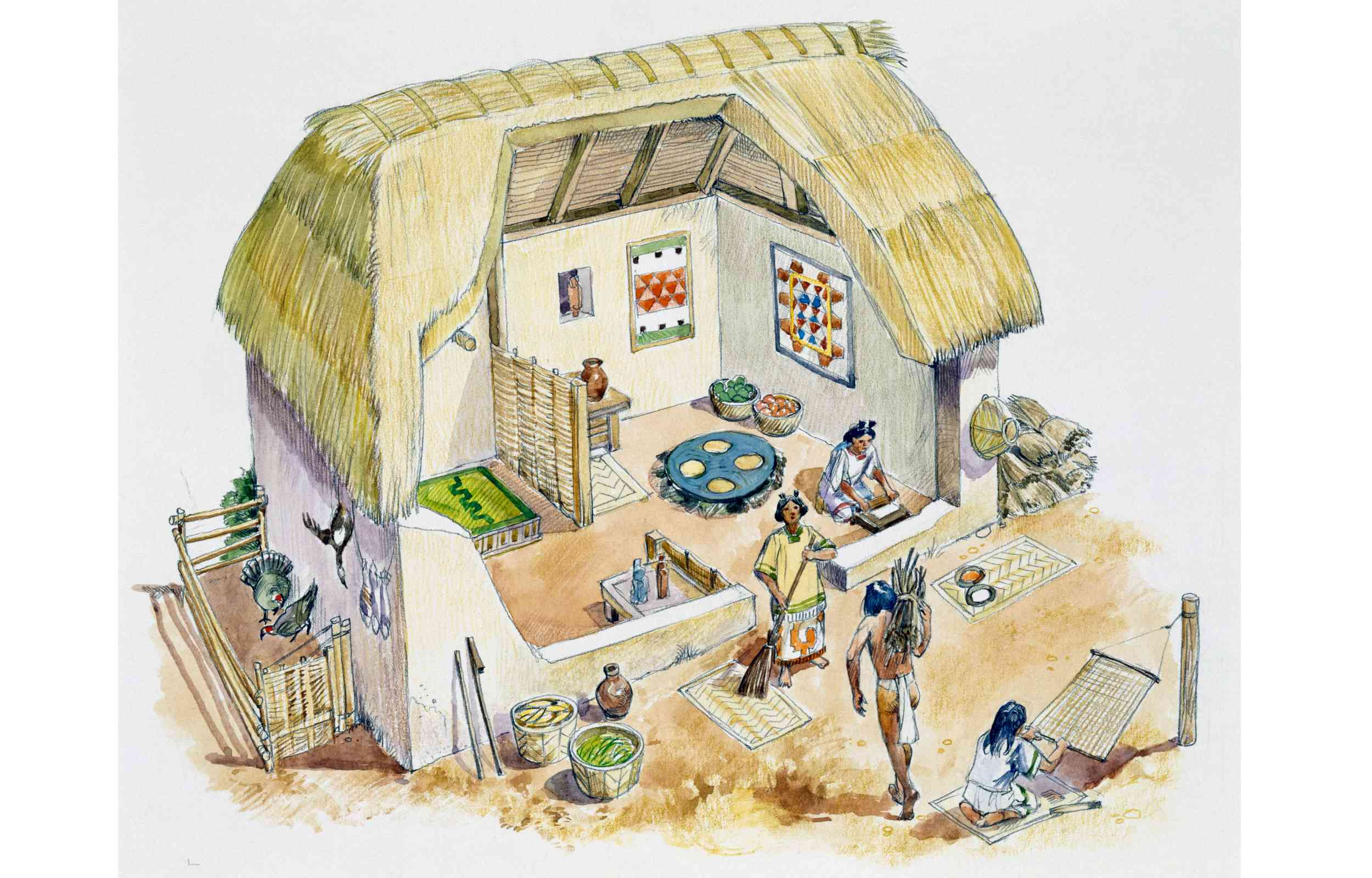 Aztec country house built with mud bricks and roof made from leaves or reeds, drawing, Aztec, 14th-16th century