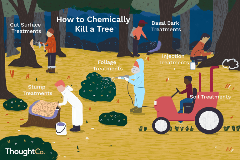 How to chemically kill a tree