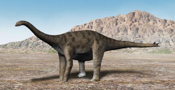 nebulasaurus