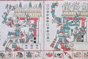 Page from Codex Tezcatlipoca, Illustrating Centeotl