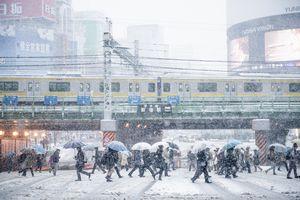 Snowy city in Japan