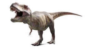 An artist rendering of a <i>T-rex</i> showing a mouthful of teeth