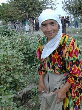 Woman in Tajikistan, Central Asia doing farmwork