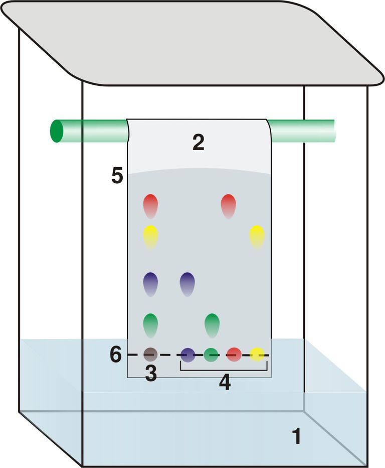 paper and thin layer chromatography scheme