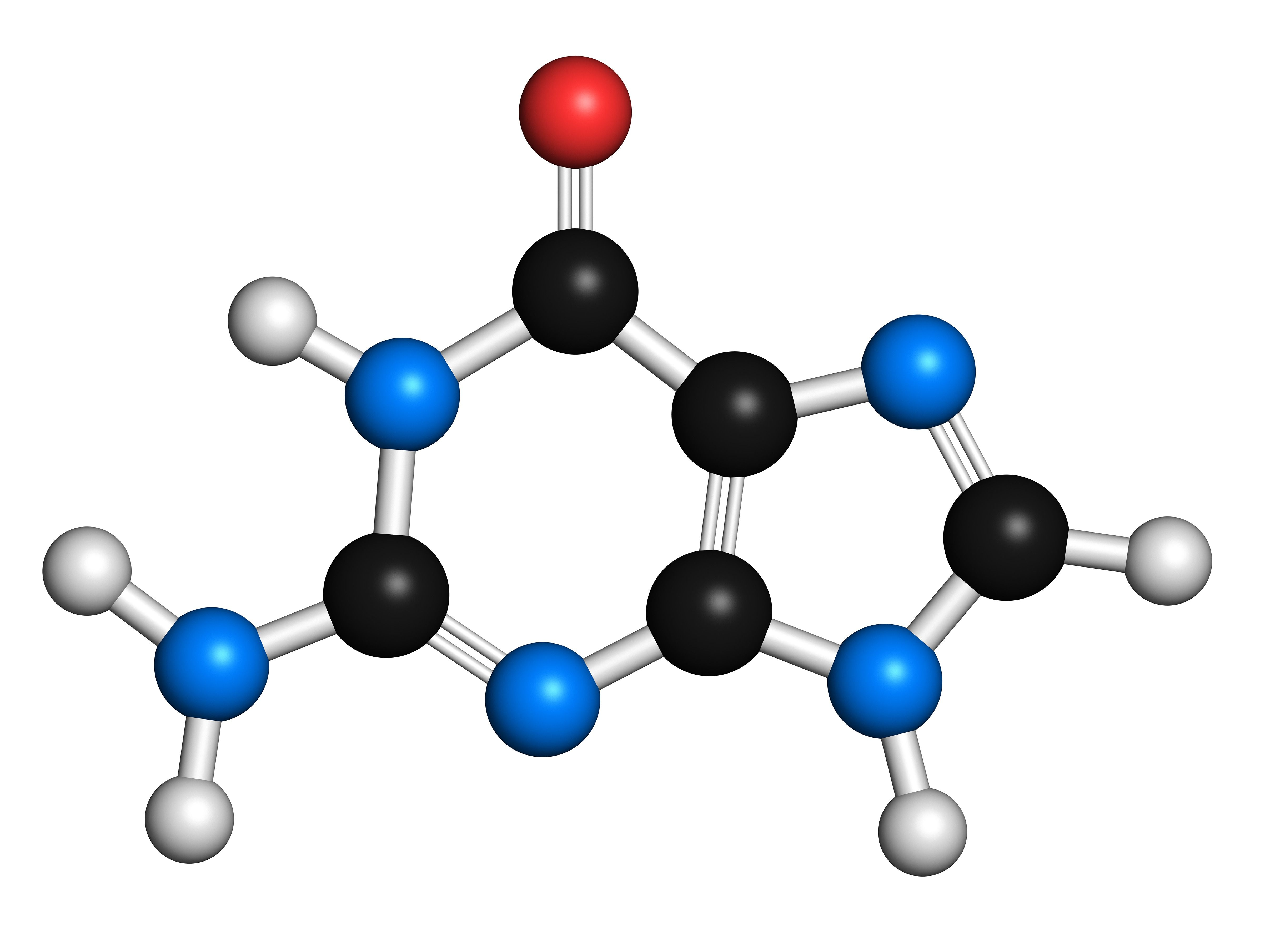 Guanine purine nitrogen base molecule