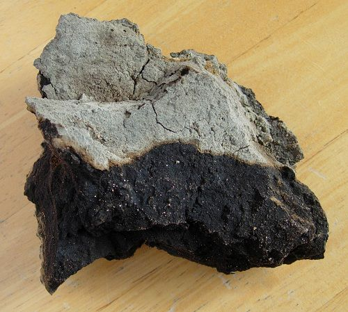 Black, pitchy natural asphalt from a petroleum seep near McKittrick in the heart of California's oil patch