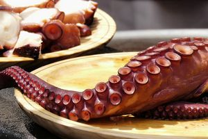 Cooked octopus served up on a plate.