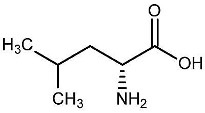 This is the chemical structure of D-leucine.