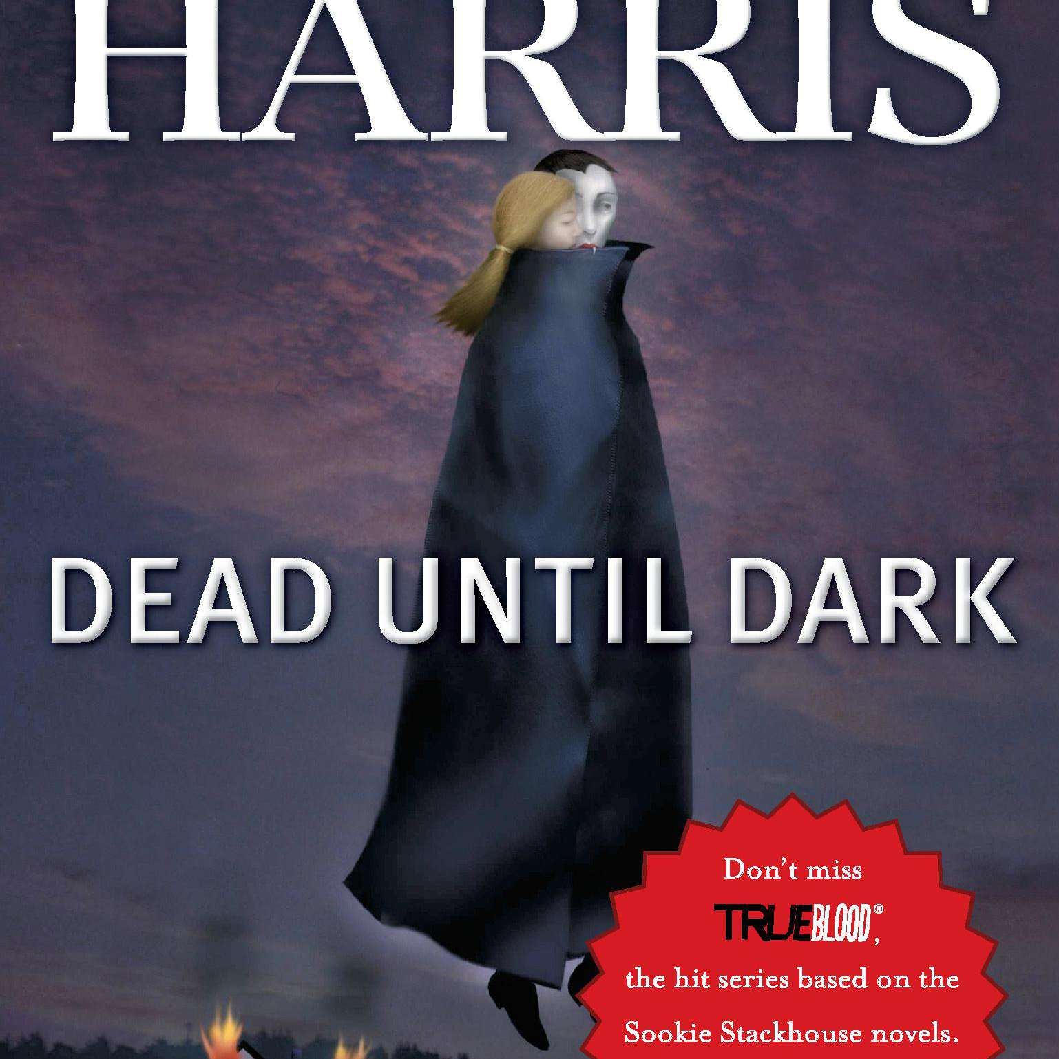 Popular Mystery Novel Series