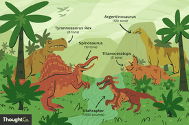 Illustration of five different dinosaurs and their sizes