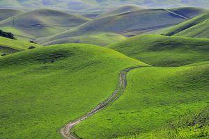 Green foothills