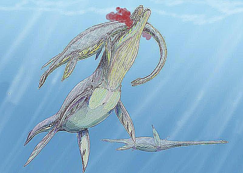 woolungasaurus