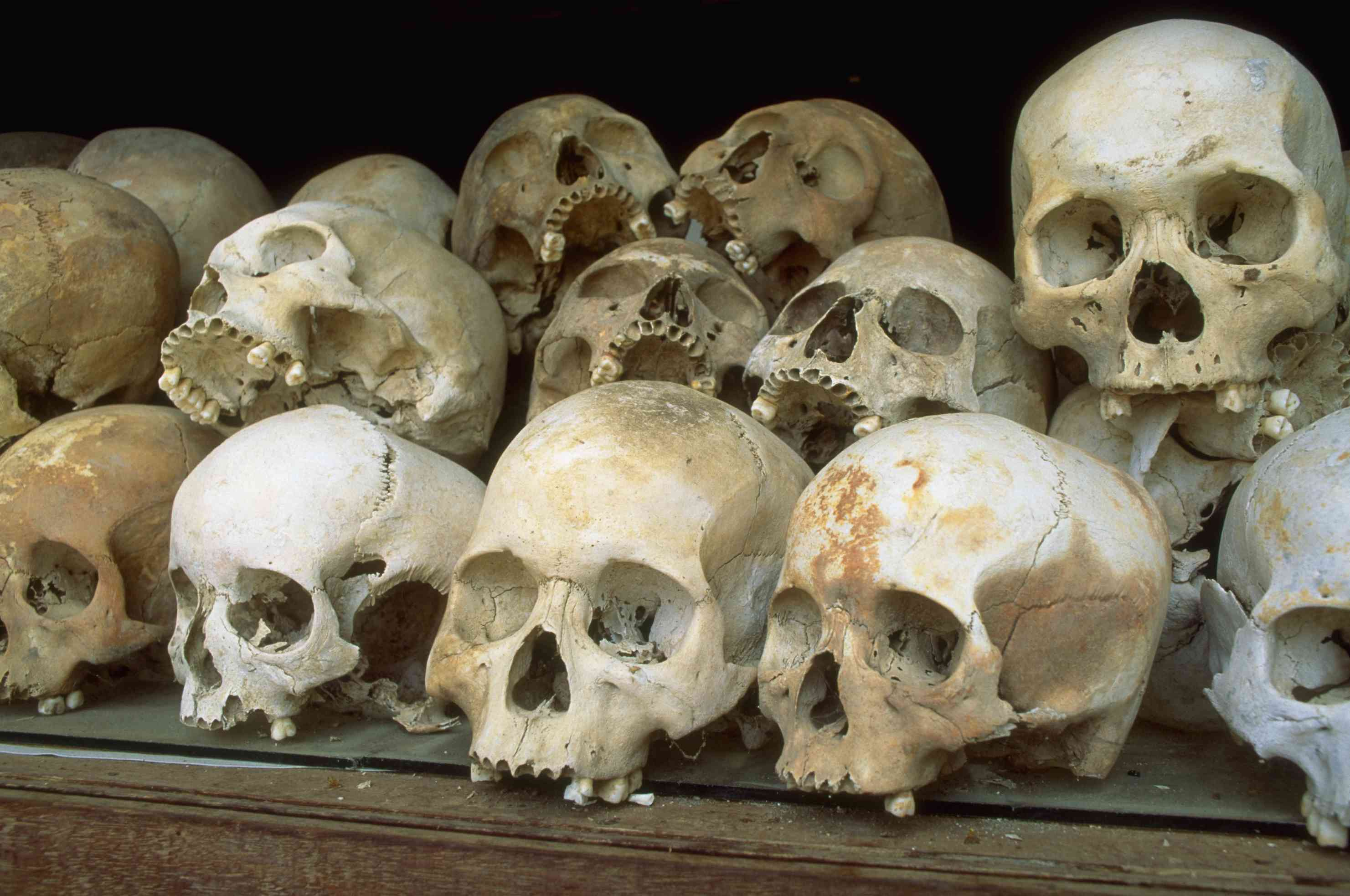 Human skulls from the victims of the
