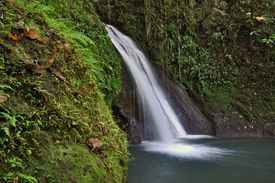 Little waterfall in the tropical forest