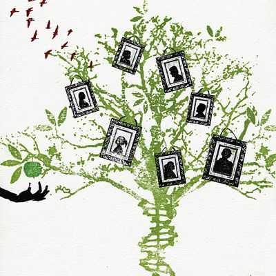step by step guide to tracing your family tree