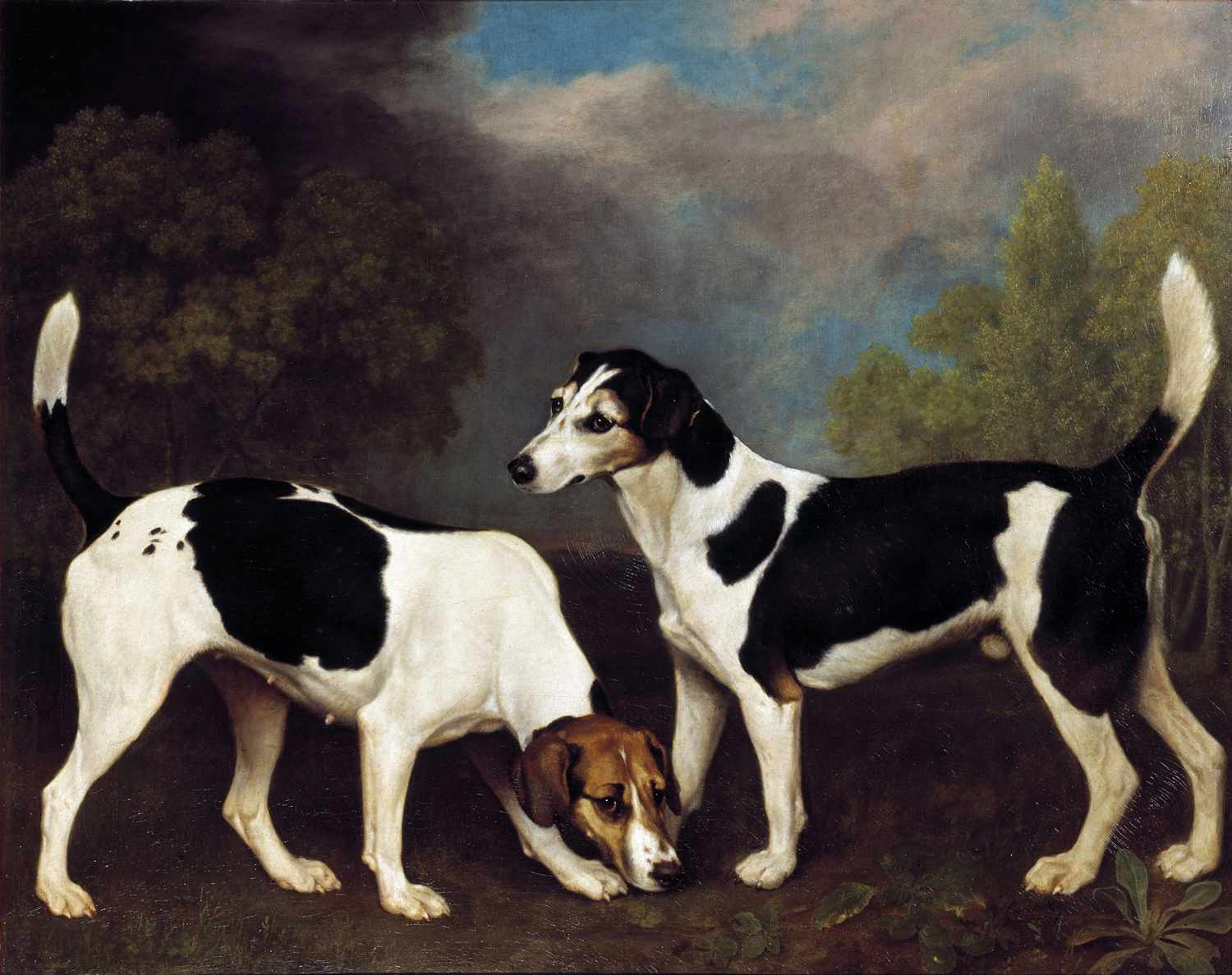 george stubbs couple of foxhounds