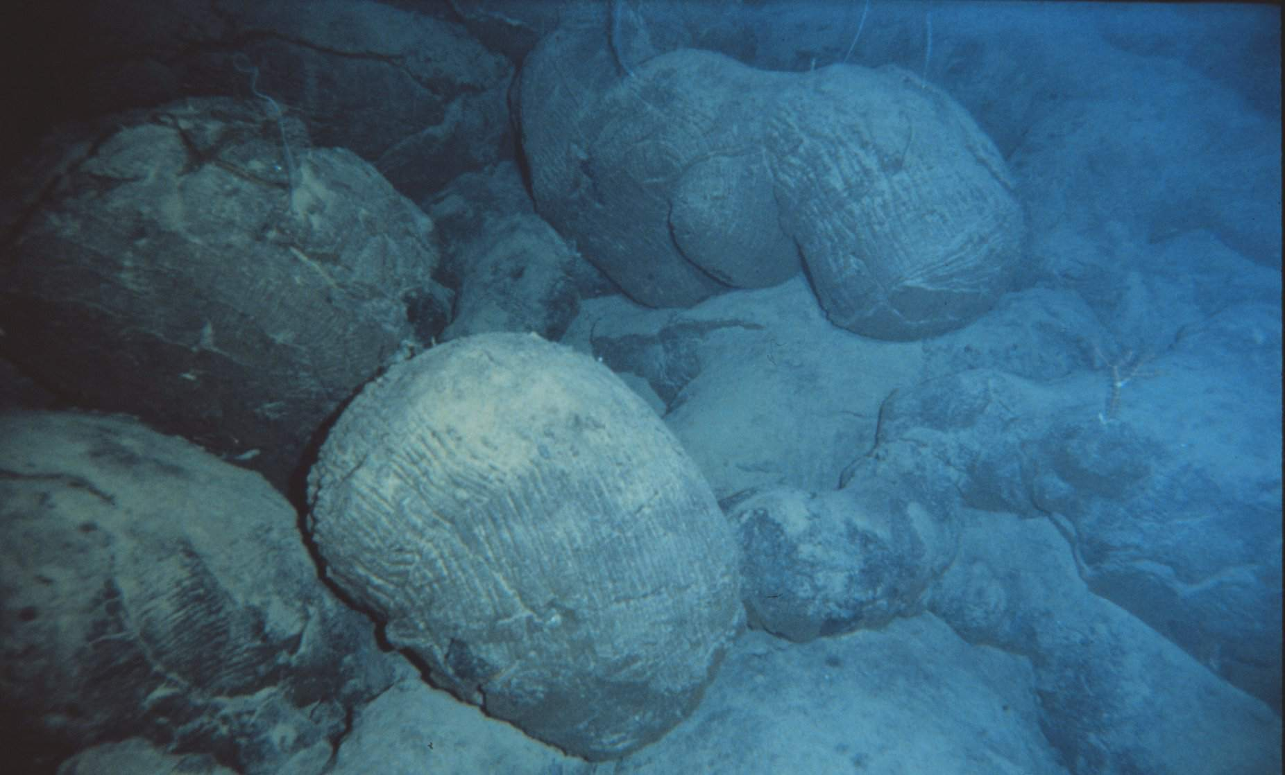 Pillow lavas under the water.