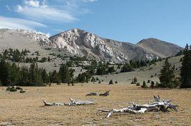 Mt Moriah Nevada