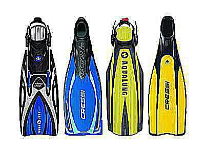 basic features and styles of scuba fins