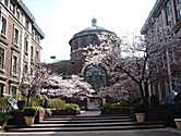 Photo of Columbia University in Spring by Yandi at Flickr