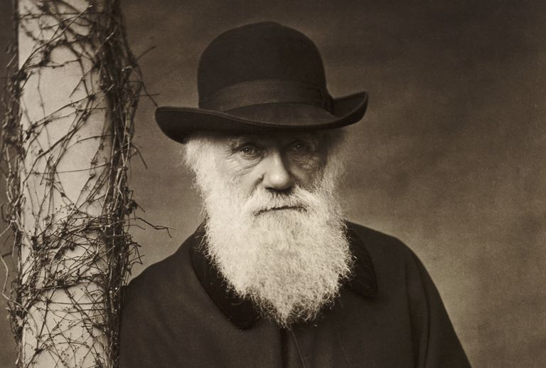 Portrait of Charles Darwin at his home, Down House
