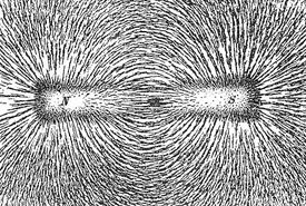 Iron filings trace the path of the magnetic field lines generated by a bar magnet.