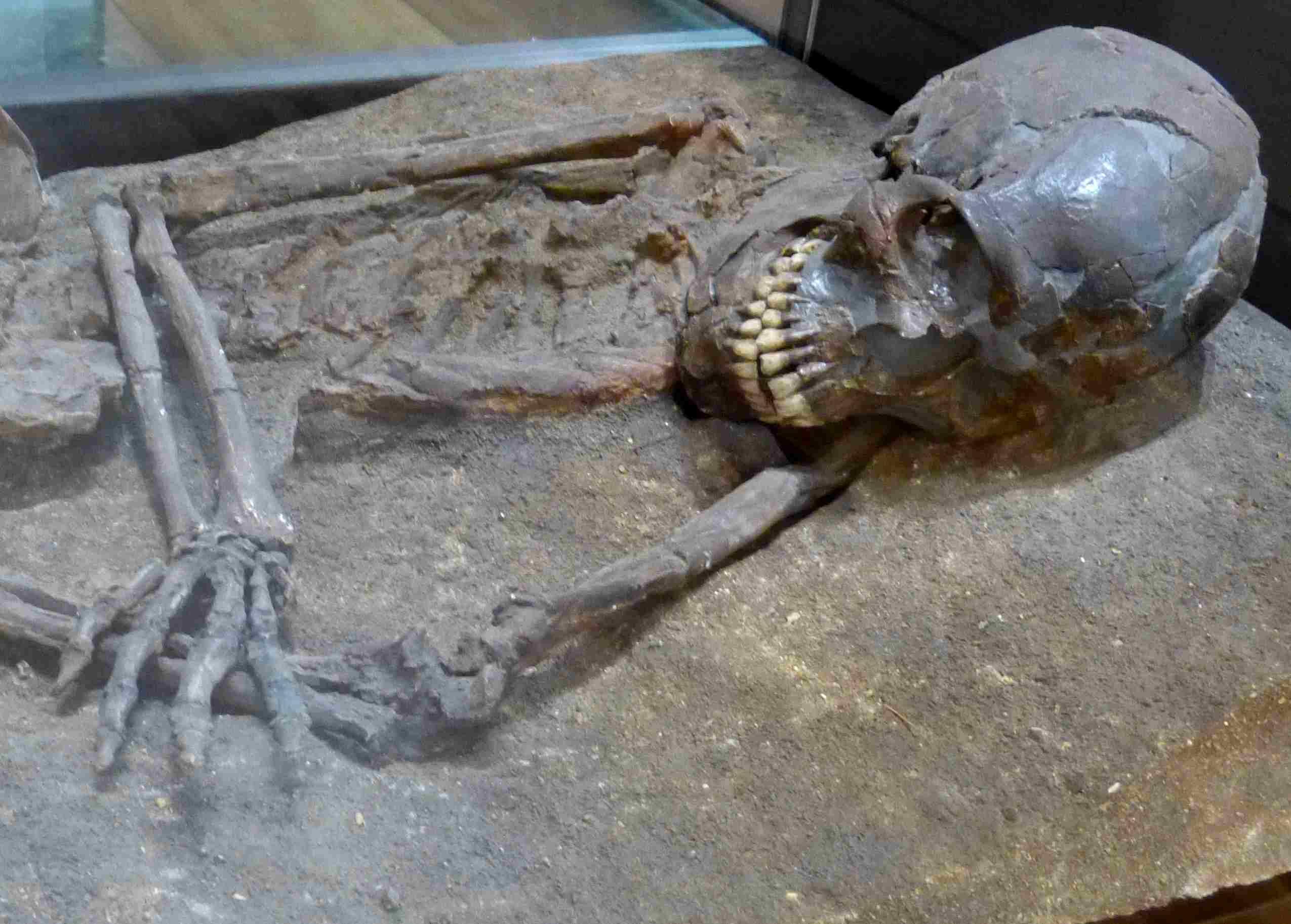 Ο τάφος του Homo sapiens από το Qafzeh