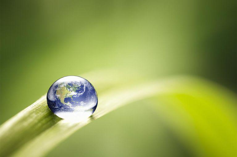 World in a drop macro