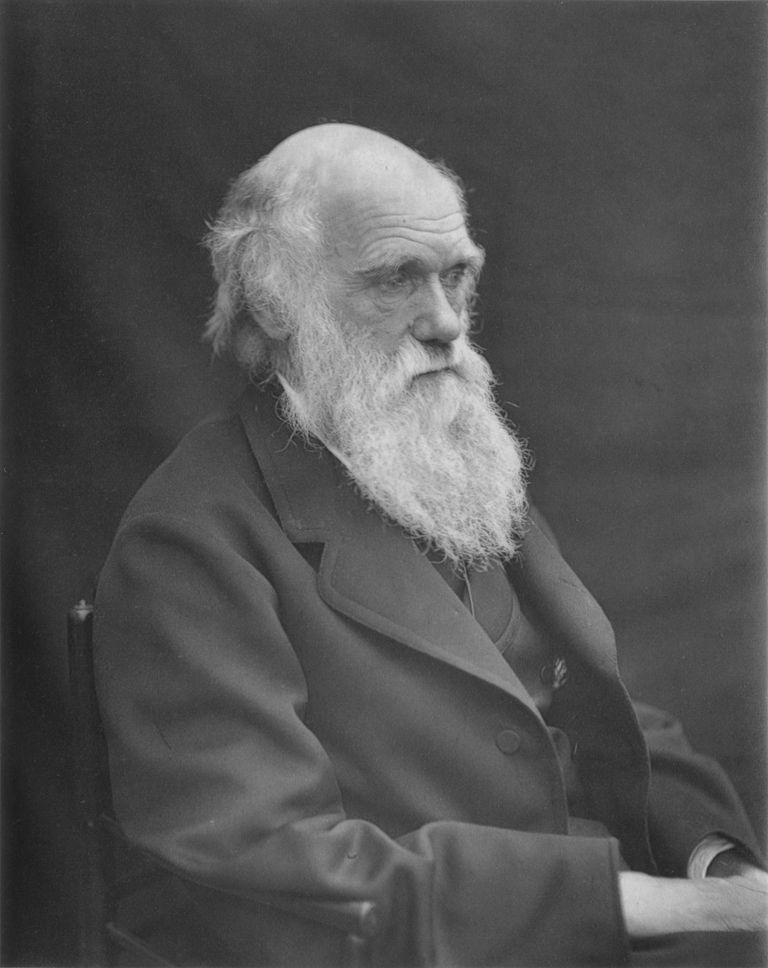 Charles Darwin, circa 1874