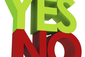 The words yes and no are morphemes.