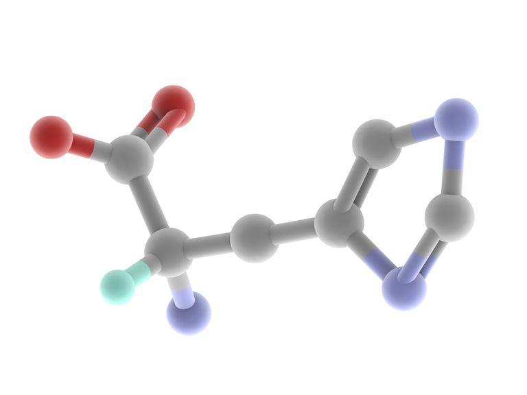 Histidine molecule