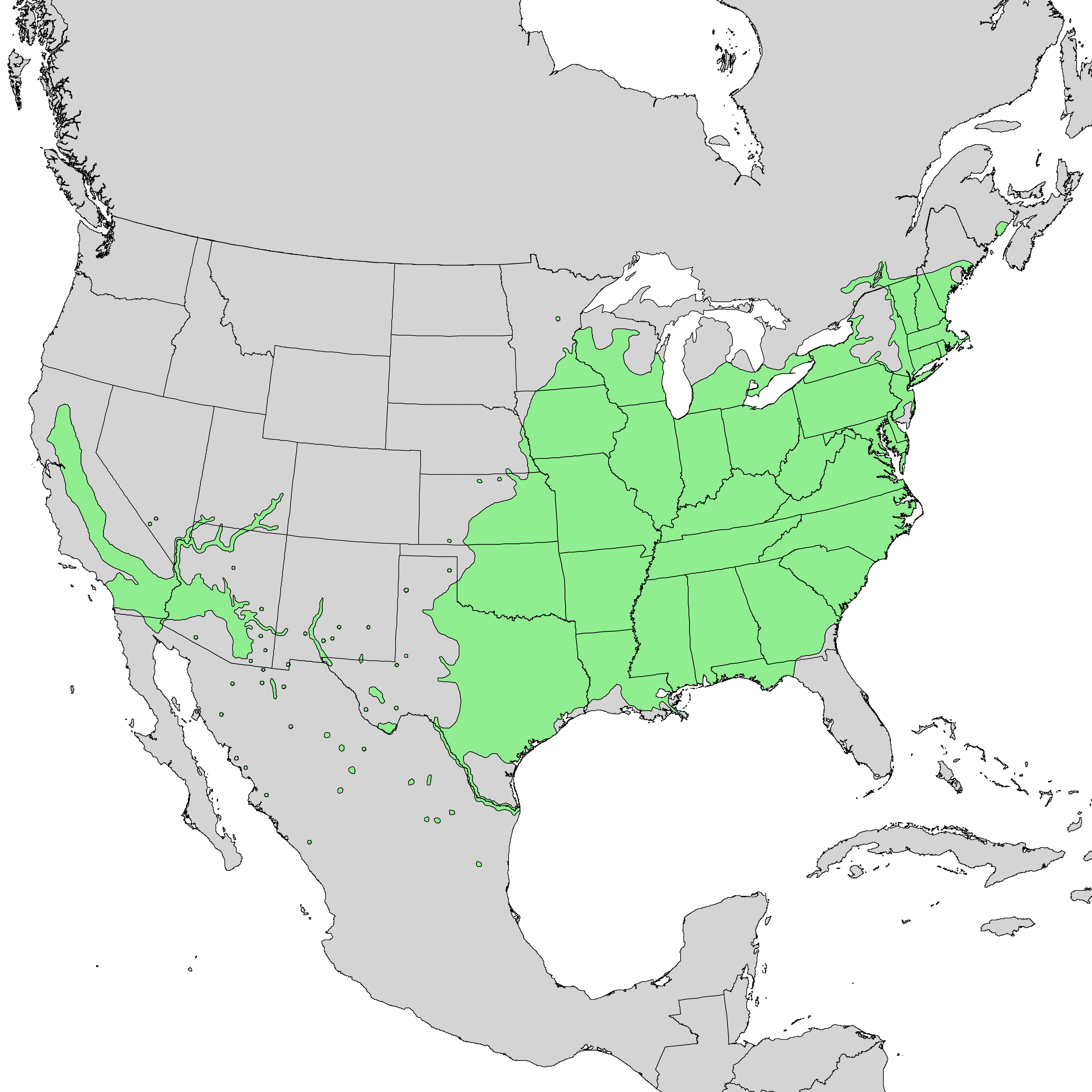 Distribution map for the black willow tree