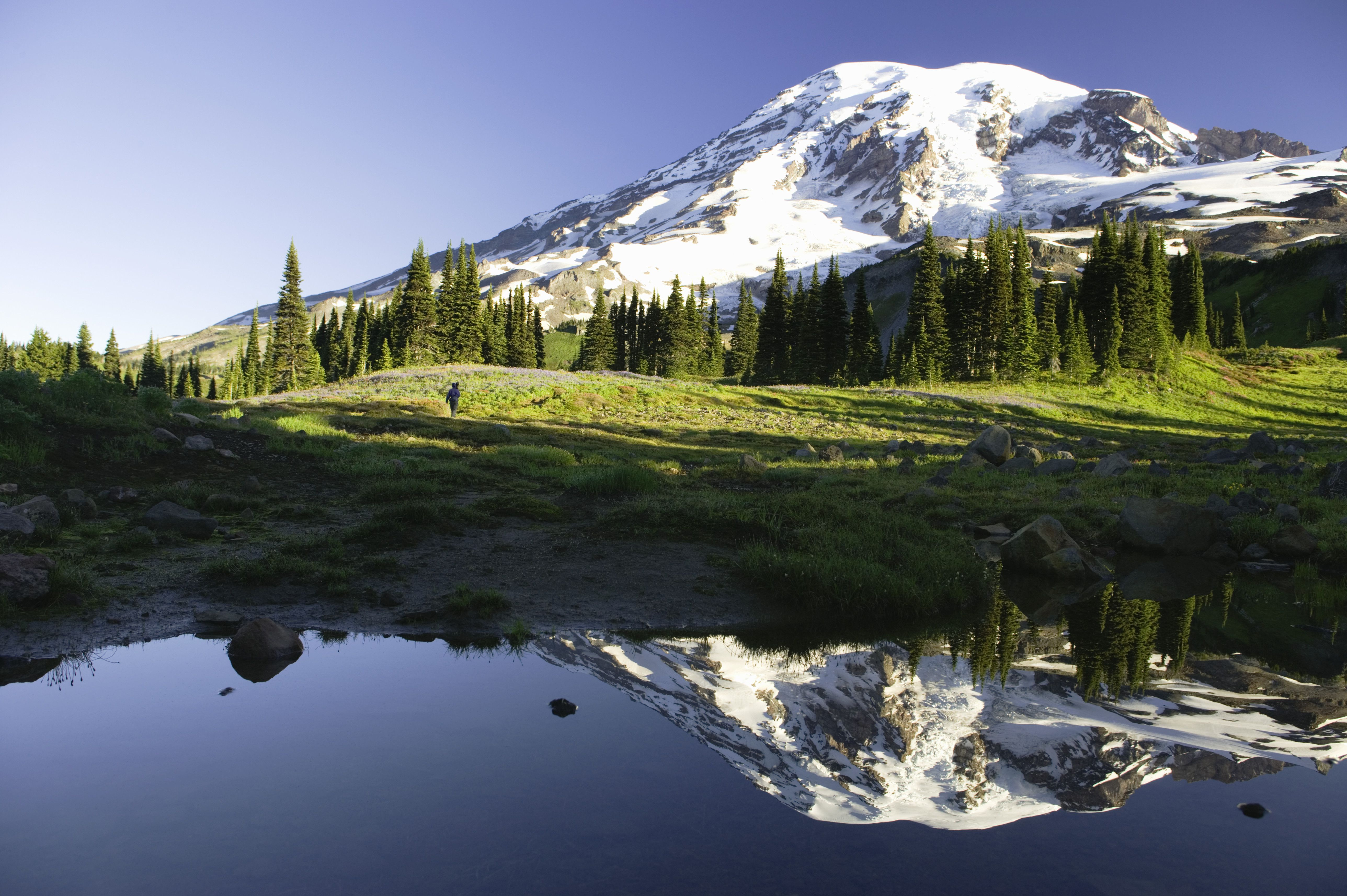 USA, Washington, Mt. Rainier National Park, hiker on path