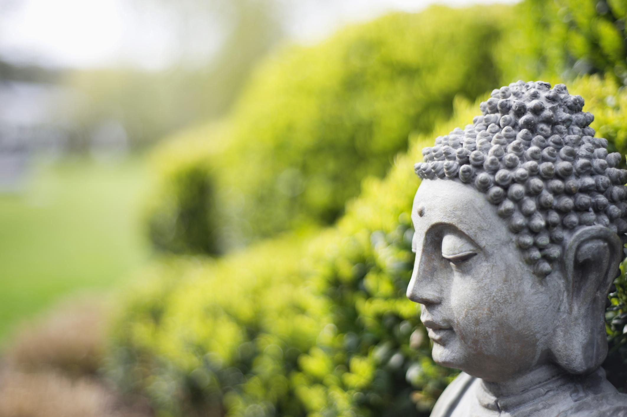 The Practice of Buddhism