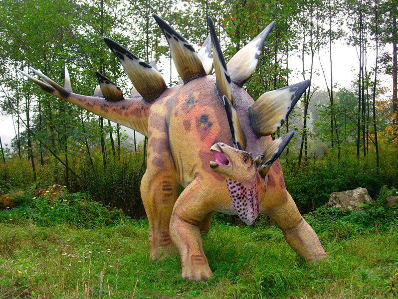 10 facts about stegosaurus you might not know