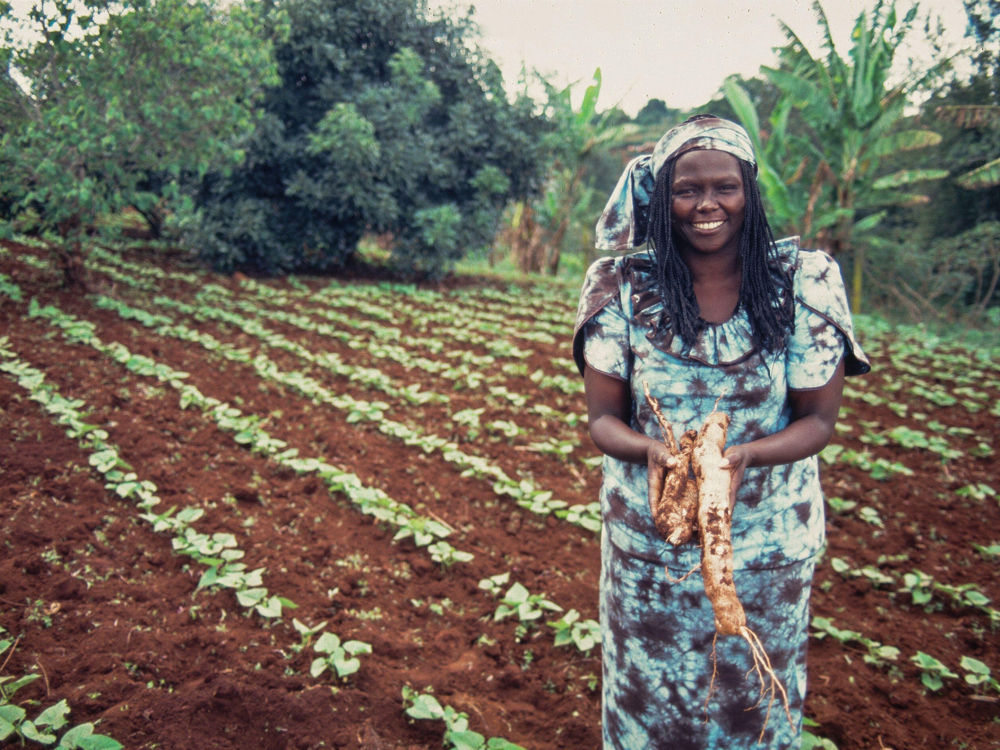 Wangari Maathai: Environmentalist, Nobel Peace Prize Winner