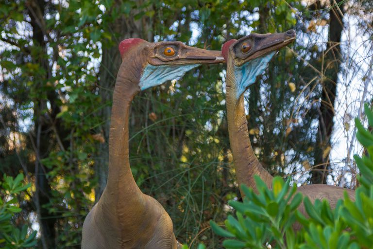 colorful dinosaur Ornithomimus Velox