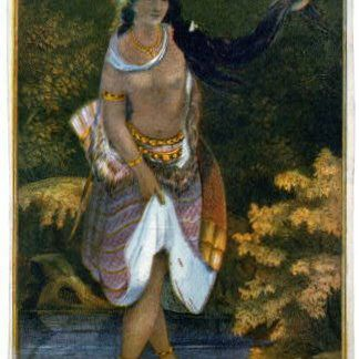 Image of Pocahontas in the popular culture