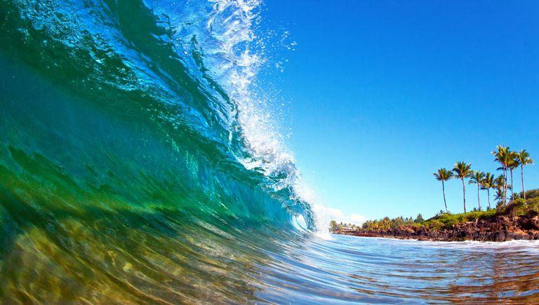 Hawaiian curl