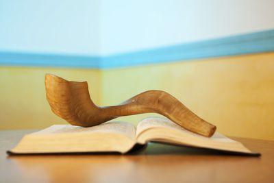 Rosh hashanah and yom kippur greetings pre fast prep to the final shofar blast are you ready for yom kippur m4hsunfo