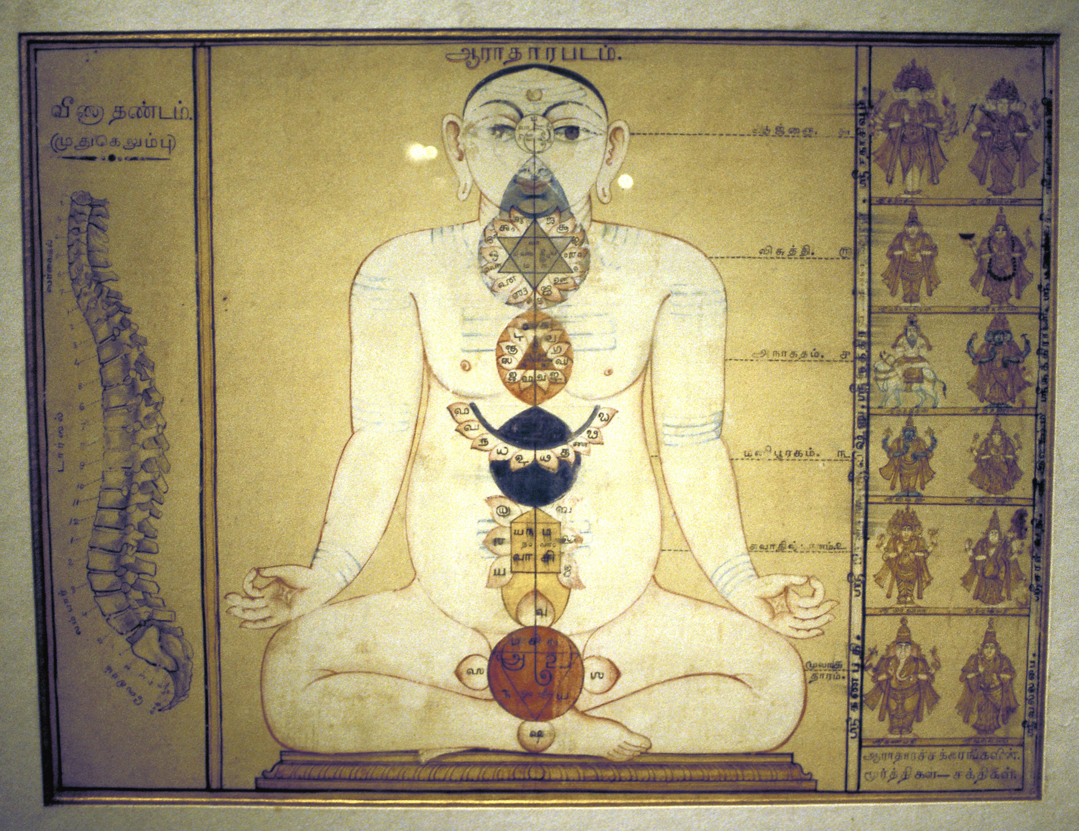 Basic And More Complex Information About The Chakras