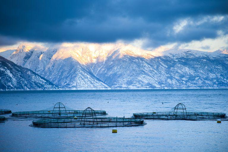 Salmon fish farm in Norway