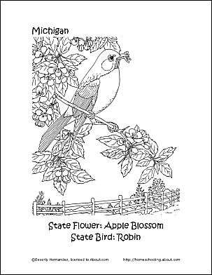 Michigan State Bird And Flower Coloring Page