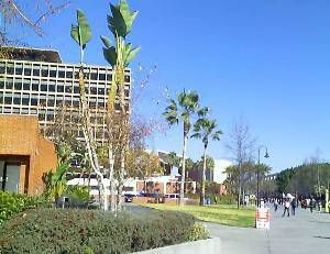 Cal State Los Angeles