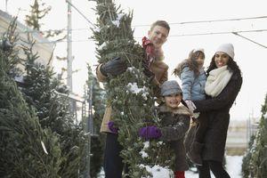 Family shopping for Christmas tree