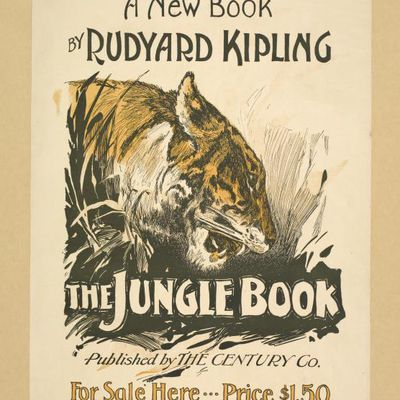 Robinson Crusoe Questions For Study And Discussion Rudyard Kipling  The Jungle Book Questions