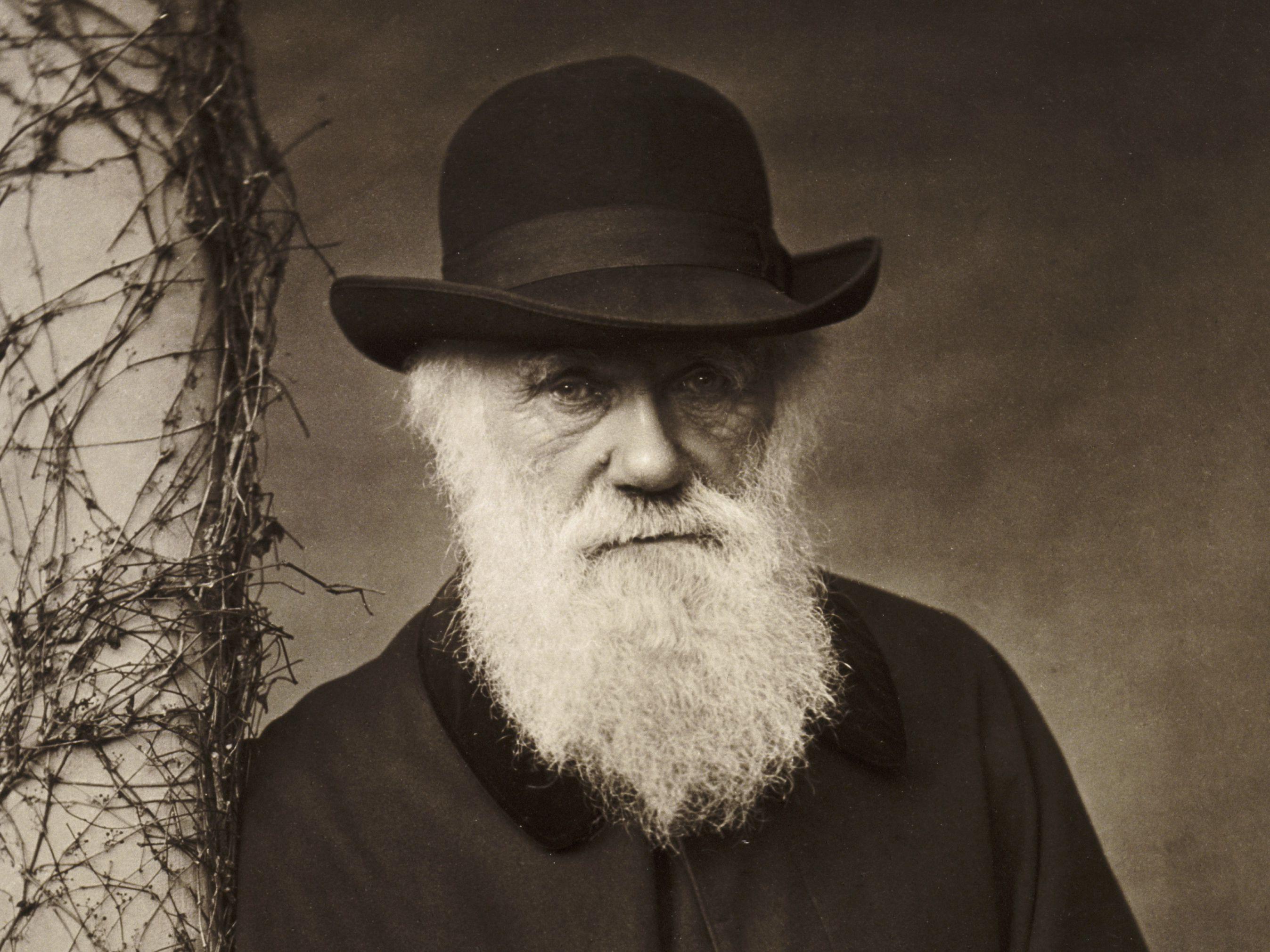 Biography of Charles Darwin, 19th Century Naturalist