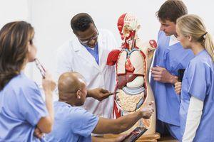 A medical school anatomy class.
