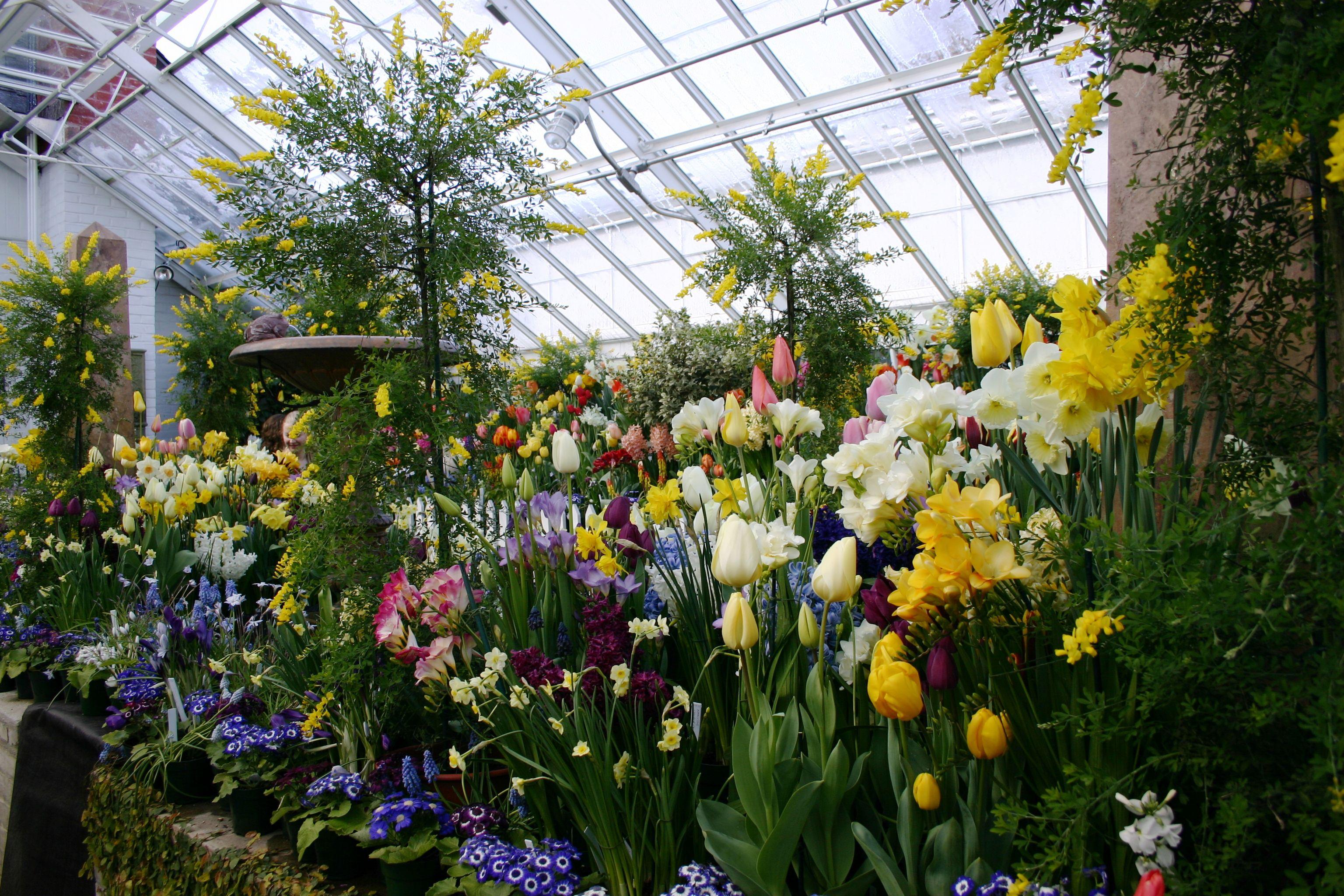 Smith College's greenhouse