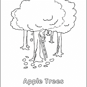 appleseedcolor 58b971b23df78c353cdbb747